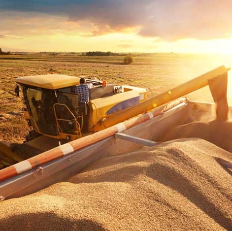 Suddenstrike Pest Control Cheshire | Domestic, Commercial, Agricultural | Grain harvesting